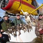 Limit of Alaska Ducks